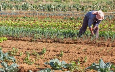 Para Raul Jungmann, Reforma Agrária desapareceu com Dilma