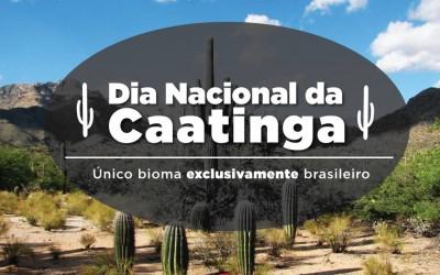 Raul Jungmann pede a preservação da Caatinga