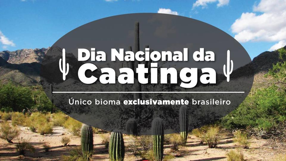 Resultado de imagem para Dia da Caatinga